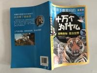 中国孩子最爱问的十万个为什么: 动物奥秘 昆虫世界